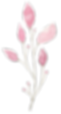 FLOWER_23 2.png
