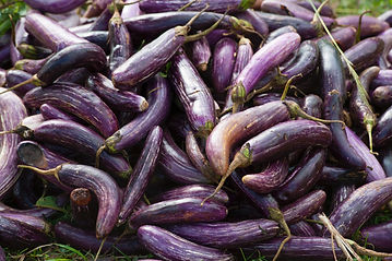 aubergine-close-up-cook-321551.jpg