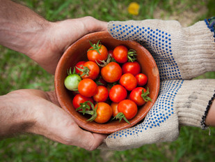 6 trucs pour manger des fruits et des légumes locaux toute l'année !