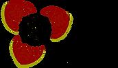LogoVF - Sophie Boulerice.png