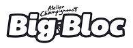 bigblocAC (1) - Virginie Boivin.jpg