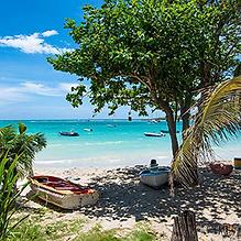 Comité du tourisme des îles de la Guadeloupe