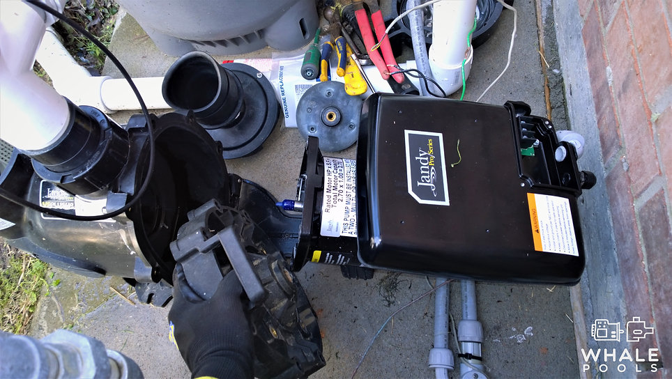 Pool Pump Motor Replacement_Whale Pools.
