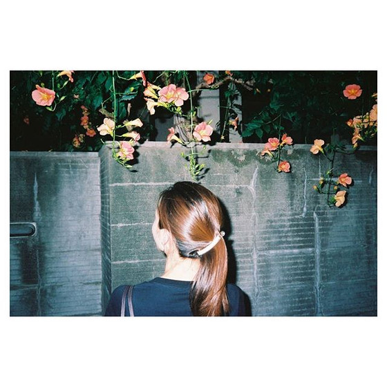 Portrait Series 吉祥寺⚡Tokyo, Japan 毎年この花は撮りたくなる🙋 #konicac35 #kodakportra400__#back2thebase #sideroadmagazine #streethoney #portracurated #24hr