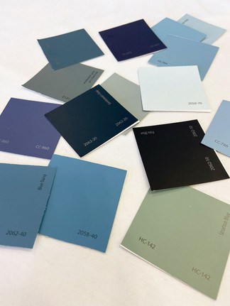 Paint Color Consultation