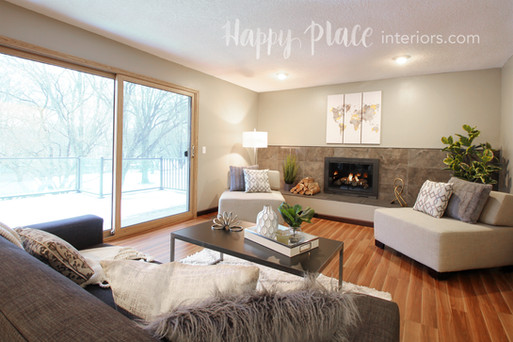 Staged living room in Minneapolis, MN