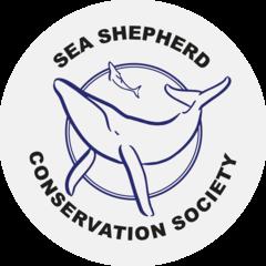 SeaShepherd_Logo_charity_1833px_1_240x24