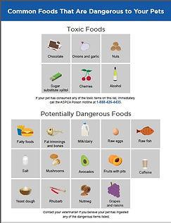 toxicscreenshot.jpg