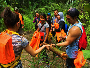 Borneo Rainforest Warriors at Sumbiling Eco Village