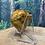 Thumbnail: Bumble Bee Jasper Chunky Heart