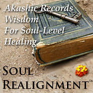 Soul Realignment Book Logo .jpg
