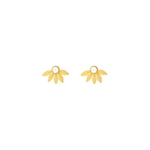 Brincos Malmequer & Pearl