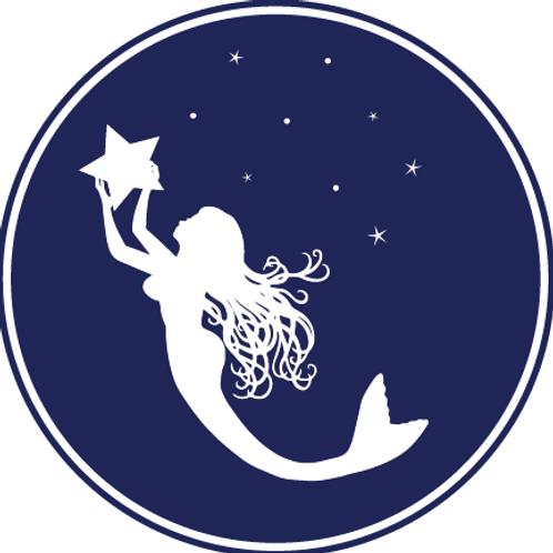 Star Sailor Sticker