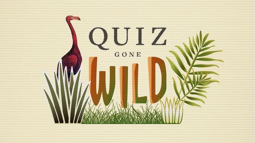 Quiz Gone Wild
