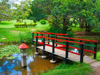 khanya-japanese-gardens.jpeg