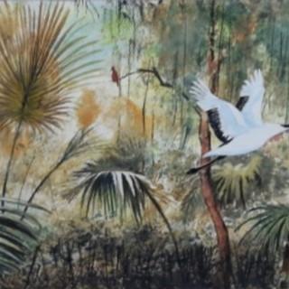 Flight of the White Crane