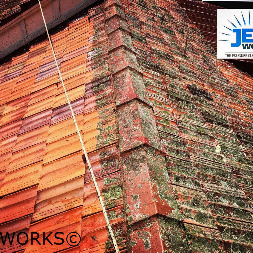 roof cleaning brisbane 103 (Copy)