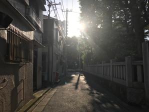 5月5日(読書記録あり)