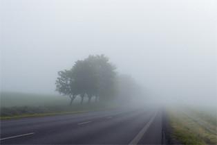misty-pixabay.jpg