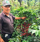 Costa Rica V&G Estate Guillermo López