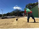 Guatemala Atitlan mill worker.jpg