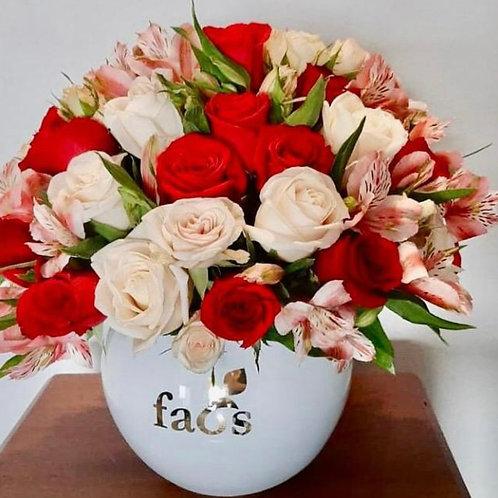 FAOS 48 Rosas