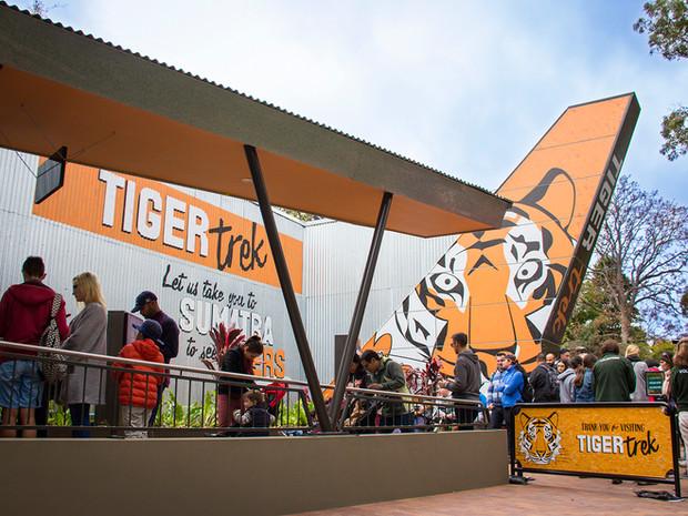 Taronga Zoo Tiger Trek