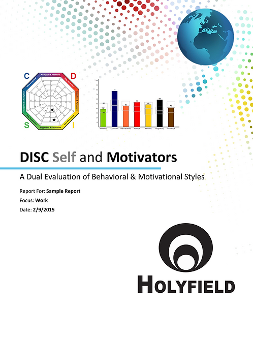 Disc and Motivators Package Assessment