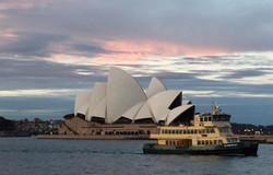 opera house2.jpg