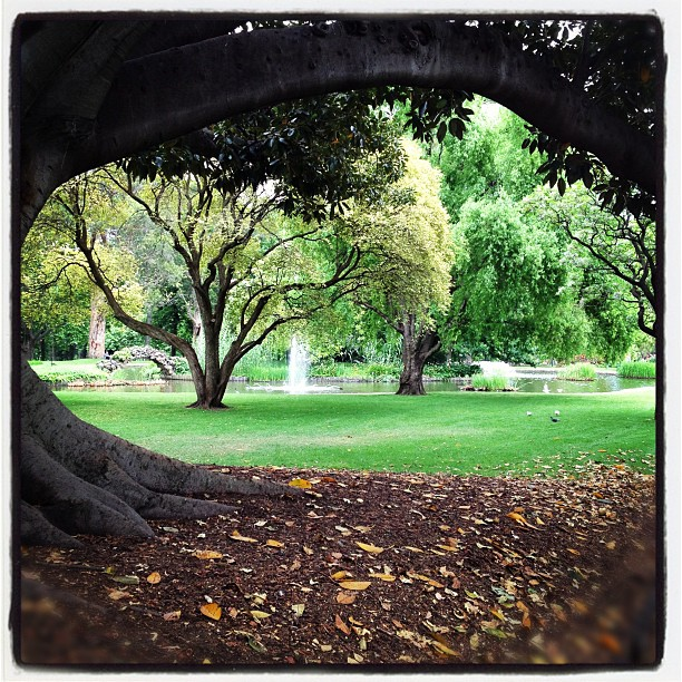 #melbourne #australia #garden #fontain #magic #oz #green #bestday #magic #fairytale #fantasy #hobbit