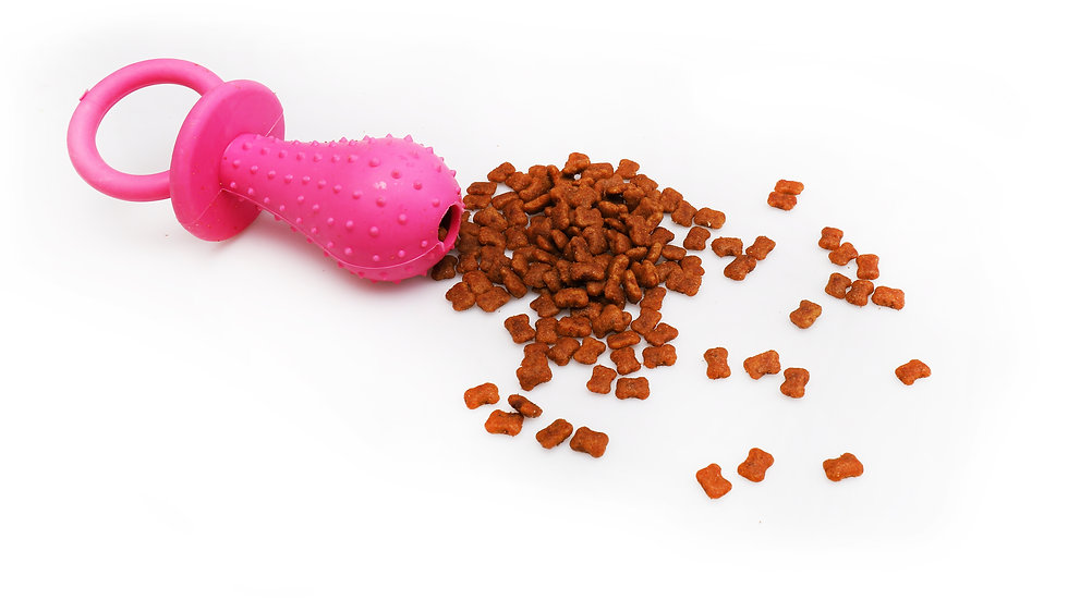 Pet food treated toy