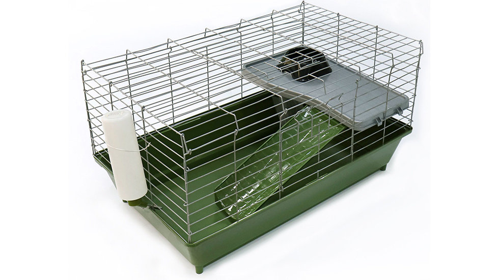 Big cage for hamster