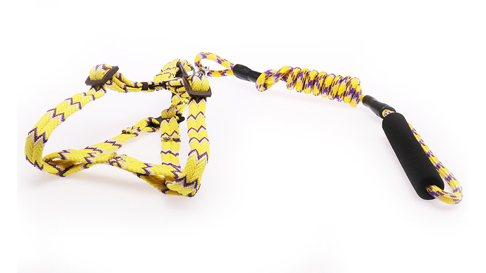 foamed handle harness with leash