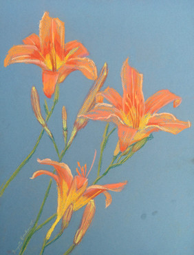 062915 Daylilies.jpg