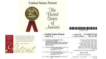 Odaibo_RETINA_AI_Patent.jpeg