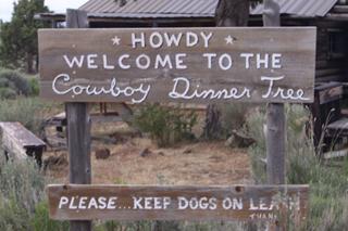 Cowboy2_17