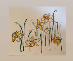 My lent lillies