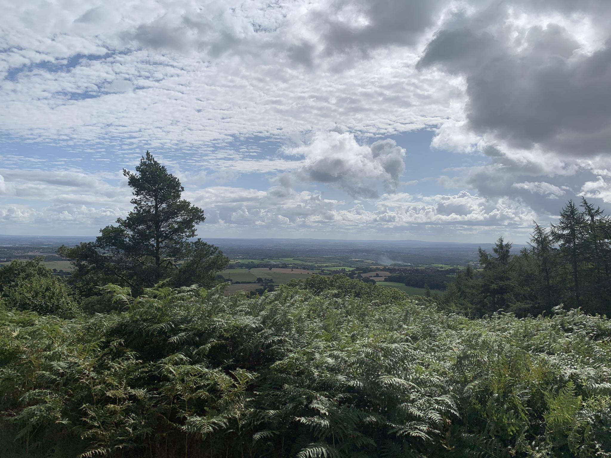 A view!