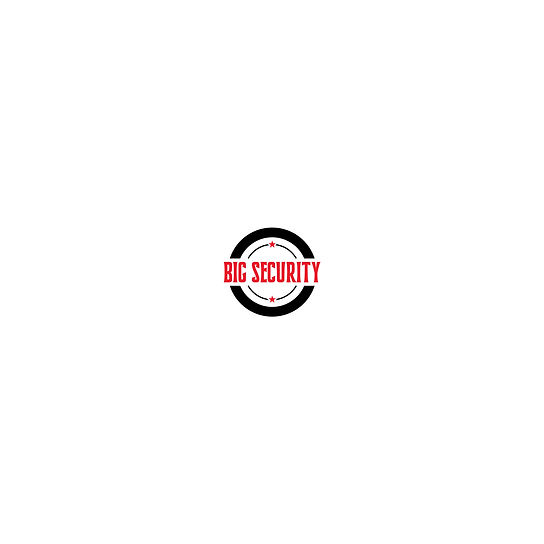 Big Security Logo.jpg