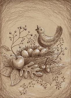 Countryside Bird Nest316.jpg