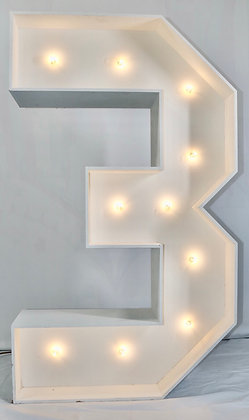 5ft LED Marquee Number 3