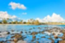 Poipu beach-1.jpg