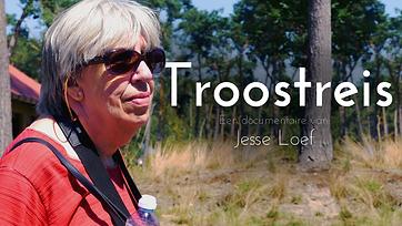 Thumbnail Troostreis.png