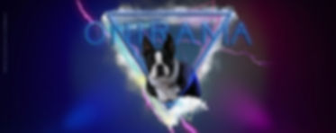 onirama boston terrier kennel.jpg