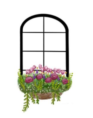 Custom Flower Box Graphic
