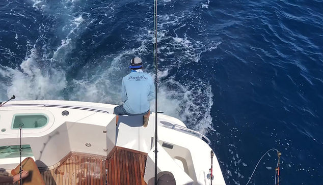 Bringing in the swordfish catch!