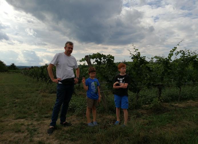 Besuch in den Weinreben.jpg