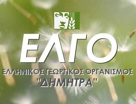 elgo-logo-image_edited.jpg