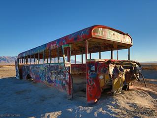 Delle Bus