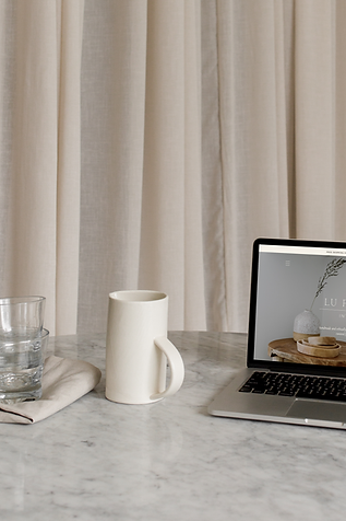 lufrance website.png